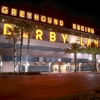 Derby Lane Greyhound Racing