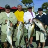 Gilligan's Charters