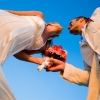 Occasions Weddings and Events, Inc.