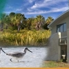 Weedon Island Preserve Cultural & Natural History Center